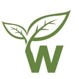 Логотип w инициала вектора зеленый Стоковые Фотографии RF