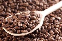 ложка кофе фасолей деревянная Стоковая Фотография RF