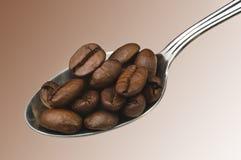 ложка кофе Стоковая Фотография