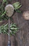 Ложка металла трав Стоковая Фотография