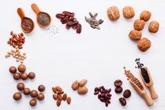 Ложка различных бобов и различных видов чокнутого ker грецких орехов Стоковое фото RF