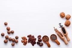 Ложка различных бобов и различных видов чокнутого ker грецких орехов Стоковая Фотография