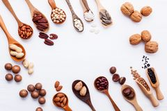Ложка различных бобов и различных видов чокнутого ker грецких орехов Стоковые Изображения