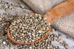 Ложка с семенами пеньки Стоковые Изображения