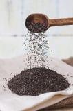 Ложка с семенами chia Стоковые Фотографии RF