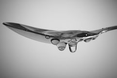 ложка Стоковое Изображение RF