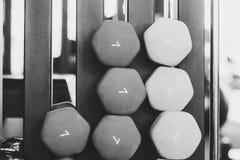 Ложь гантелей в спортзале Стоковое фото RF