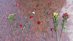 Ложь цветков на холодном граните Стоковое фото RF