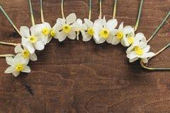 Ложь Daffodils на деревянной предпосылке Стоковые Изображения RF