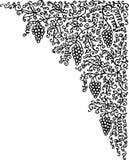 лоза виньетки lxxiv Стоковые Изображения