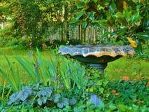 Лоза покрыла ванну 1 птицы Стоковая Фотография RF