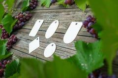 Лоза с виноградинами и листьями вокруг на винтажном деревенском деревянном столе Комплект шаблона бирок differents бумажного Стоковые Фотографии RF