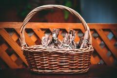 Лоза с едой Стоковое Фото