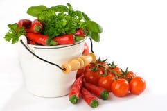лоза томатов chilis красная Стоковая Фотография RF