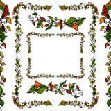 лоза цветка граници установленная Стоковое Фото