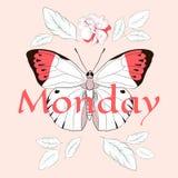 Лозунг понедельника с бабочкой и поднял Стоковое Изображение