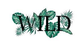 Лозунг с листьями пальмы иллюстрация вектора