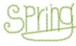 Лозы весны Стоковые Изображения