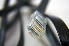 локальные сети кабеля стоковые фото