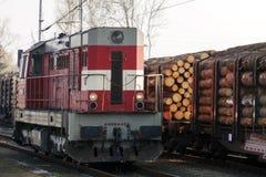 Локомотив путешествует на железнодорожных путях, на предпосылке железнодорожных экипажей нагруженных с тимберсом стоковое изображение rf