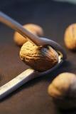 ломать грецкий орех Щелкунчика Стоковое Изображение