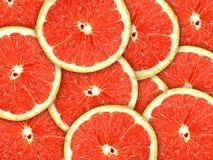 ломтики грейпфрута цитрусовых фруктов предпосылки Стоковые Изображения