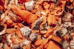 Ломтики семг Свежие куски семг, форели, на рынке на льде Стоковое Изображение