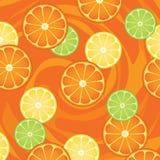 ломтики цитрусовых фруктов Бесплатная Иллюстрация