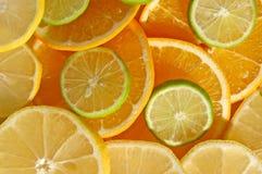 ломтики citris Стоковая Фотография RF
