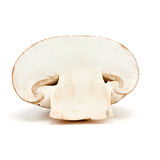 ломтик гриба Стоковые Изображения