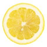 ломтик лимона стоковые изображения