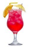 ломтик померанцового красного цвета коктеила Стоковая Фотография RF