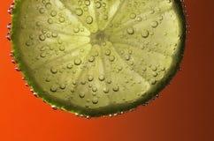 Пузыри на ломтике известки - близком стоковые изображения rf