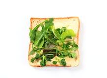 Ломтик хлеба с свежими зелеными цветами салата Стоковое фото RF