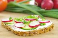 Ломтик хлеба с сыром коттеджа Стоковое фото RF