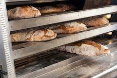 Ломти хлеба Брайна из печи Стоковые Изображения