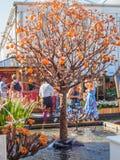 ЛОНДОН, ВЕЛИКОБРИТАНИЯ - 25-ОЕ МАЯ 2017: Выставка цветов 2017 RHS Челси Стоковые Фотографии RF