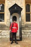 Лондон, башня предохранителя Лондона в шляпе bearskin стоковое фото rf