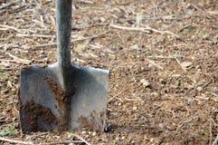 лопаткоулавливатель грязи Стоковые Изображения