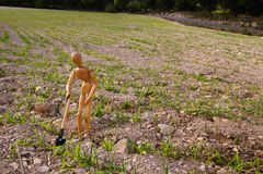 лопаткоулавливатель селянина поля стоковое фото