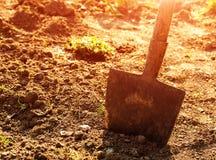 Лопаткоулавливатель в садовом инструменте Стоковые Изображения RF