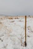 Лопаткоулавливатель в снеге Стоковое фото RF