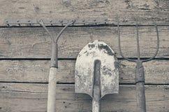 Лопаткоулавливатель, грабл и вила Стоковое Фото
