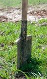 Лопаткоулавливатель с почвой Стоковые Изображения