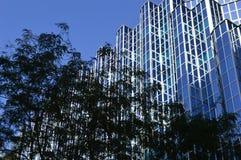 Лоснистое окно в организации бизнеса Стоковое Изображение