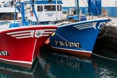 ЛОС CHRISTIANOS, TENERIFE/SPAIN - 19-ОЕ ЯНВАРЯ 2015: Горжетка рыбной ловли Стоковые Фото