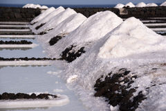 Лотки соли в Fuencaliente, Ла Palma, Канарских островах Стоковое Изображение RF