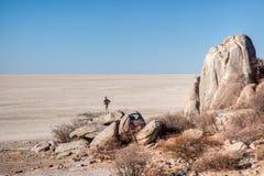 Лотки Makgadikgadi Стоковое Изображение