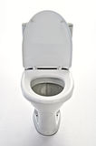 лоток туалета Стоковая Фотография RF