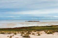 Лоток Etosha, Намибия Стоковое Изображение RF